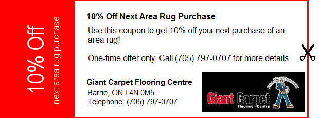 One Time Only Coupon 10 Off Next Area Rug Purchase