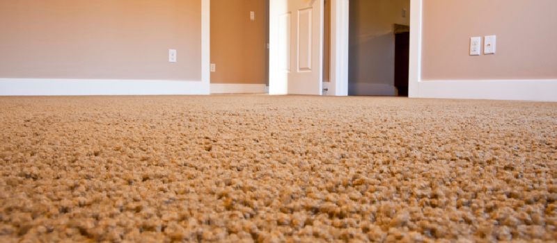 Carpet in Collingwood, Ontario